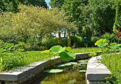 Interview: Bedrock Gardens
